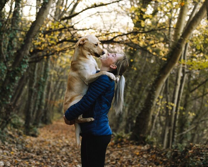 5 Areas of Wellness to Revisit this Fall